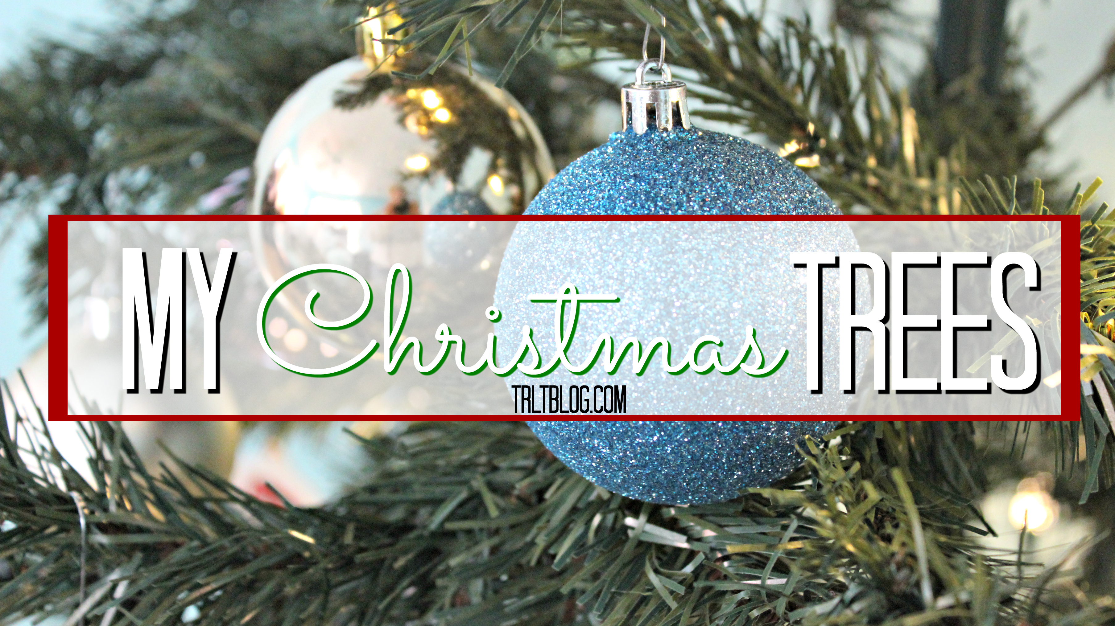my-christmas-trees